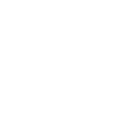 Mark Stewart Logo